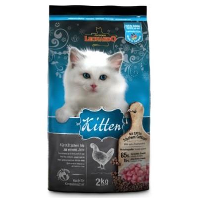 Leonardo Kitten - Pollo